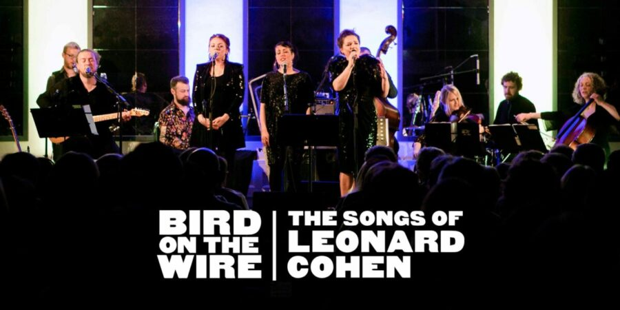 cover pic 900x450 - Bird on the Wire (IRE) Sunday 29th December 2019